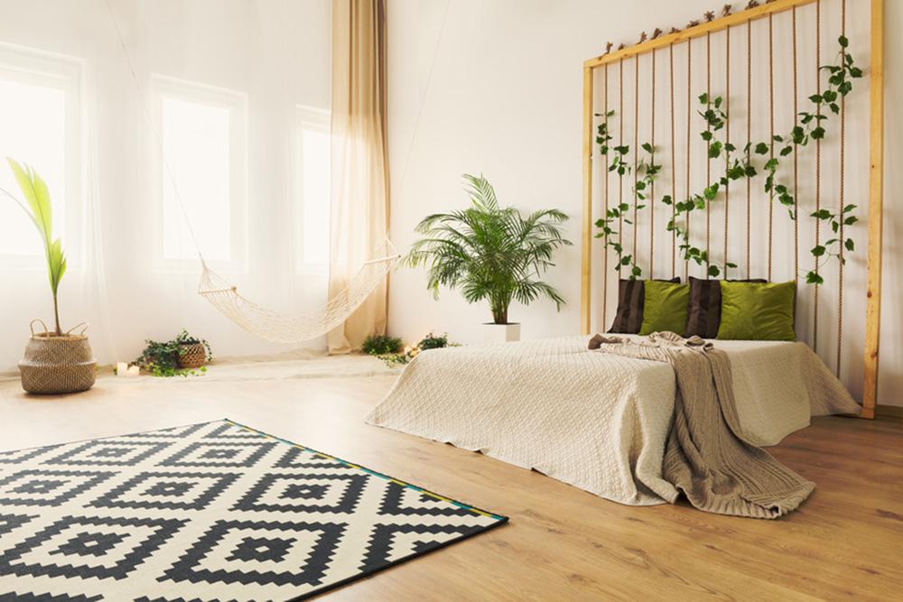 Jakie rośliny warto wybrać do projektu sypialni?